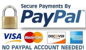 Check Out With Paypal - No Paypal Account Required